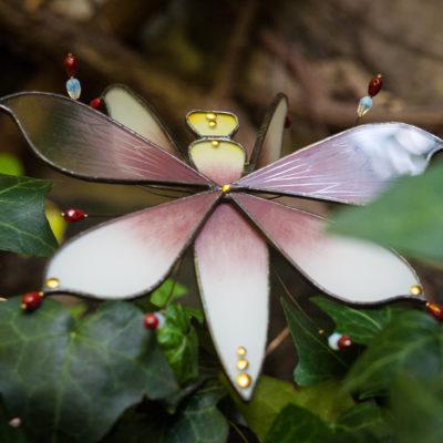 Mante-orchidée 2/Orchid mantis 2